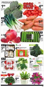 Loblaws Flyer October 24 2016 Fresh Products