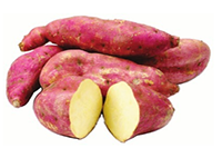 No Frills New Tastes Caribbean Sweet Potatoes , $0.97 /lb.