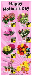 FreshCo Flyer Mothers Day Deals 11 May 2018