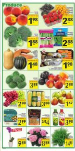 Food Basics Flyer Special Deals 17 Jun 2020